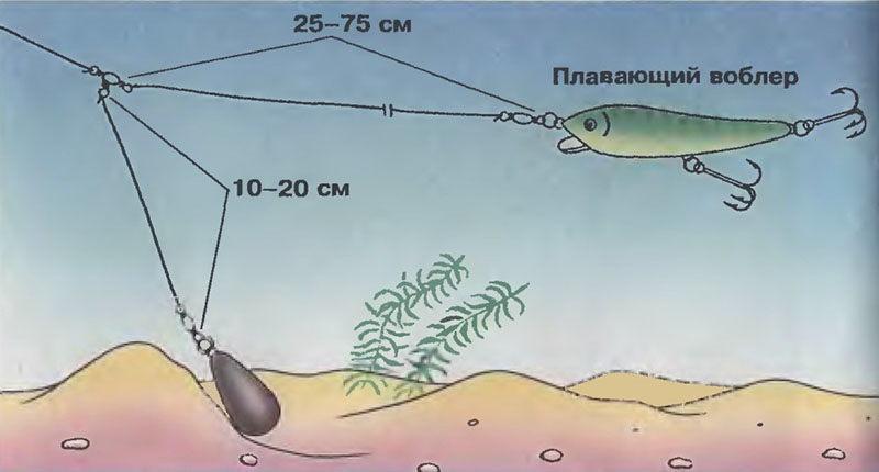 Ловля судака на воблер: оснастка и техника ловли с берега и лодки