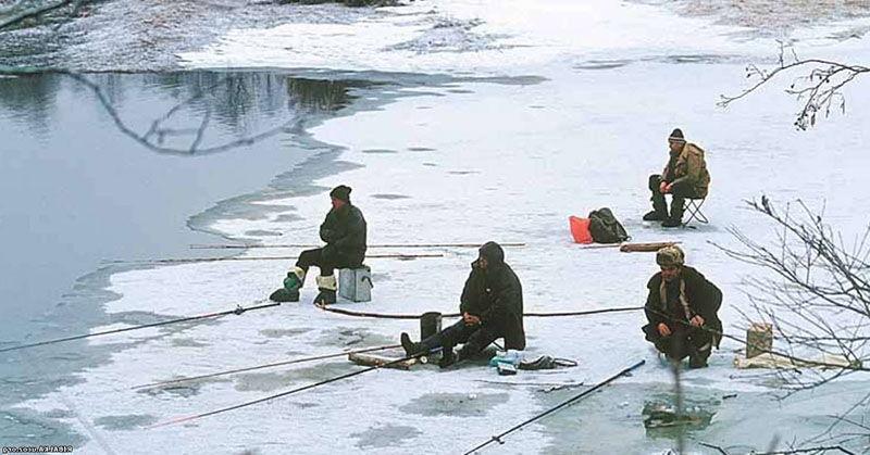 Ловля судака зимой: оснастка, выбор места, тактика